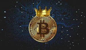 Bitcoin Is a Simple Currency Trading System for Triple Digit Profits